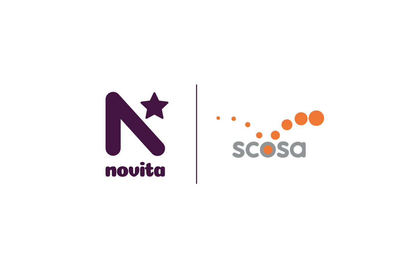 Potential merger of Novita and scosa